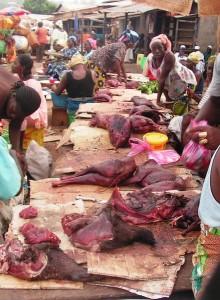 Commerce illégal de viande de brousse à Faranah