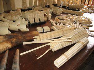 Saisie à Douala de baguettes d'ivoire destinées au marché asiatique - LAGA
